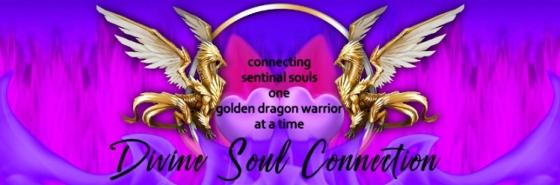 Divine Soul Connection.com